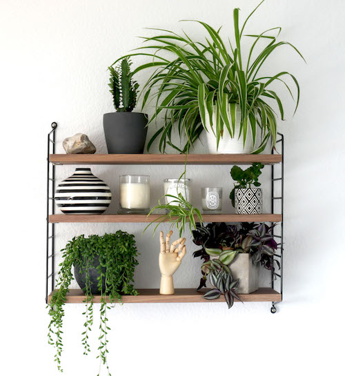 String Shelf with Plants How to style a String shelf allthelittledetails.de